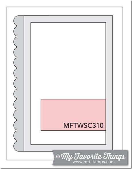 MFT_WSC_310
