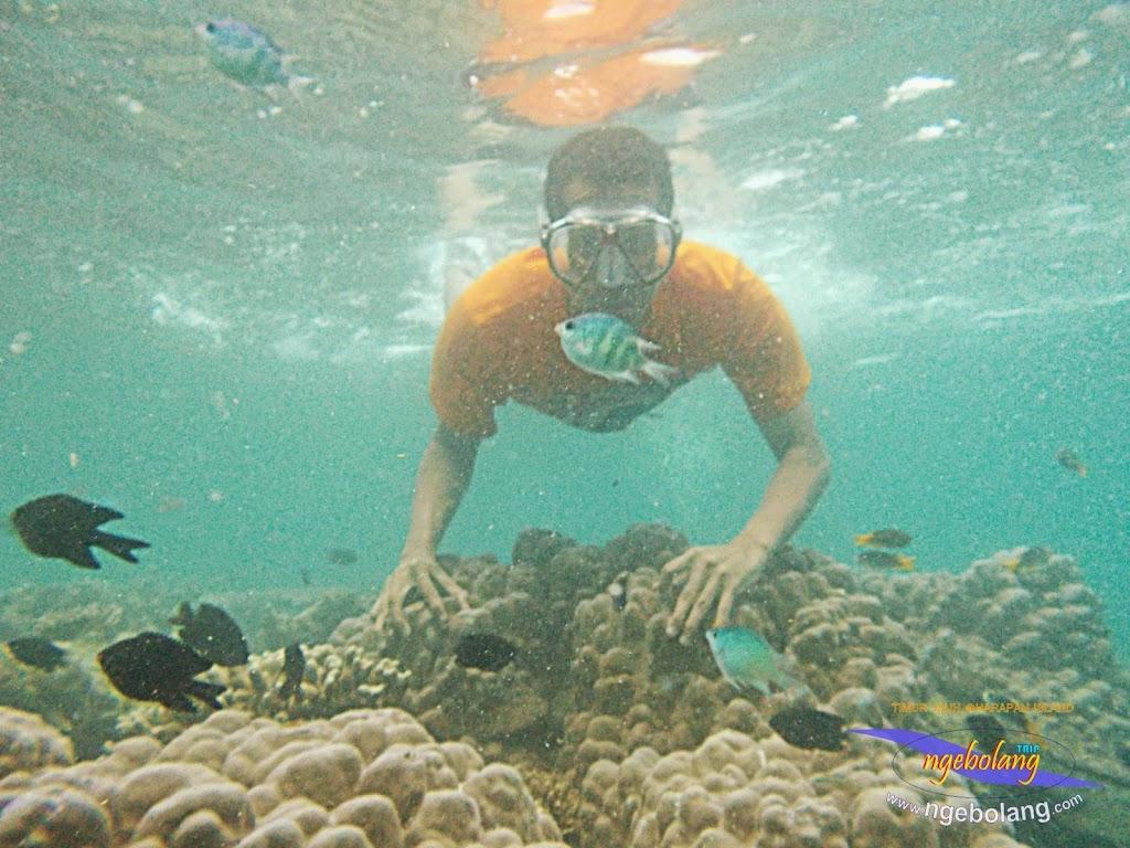 pulau harapan timur jauh 29-30 nov 2014 caklung 25