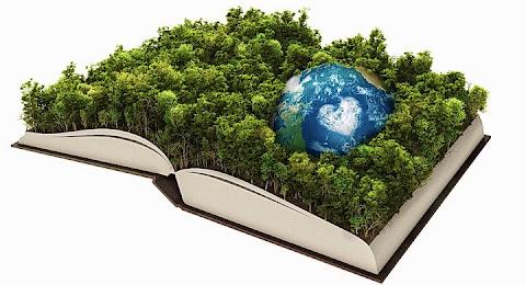 _ecologismo_