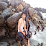 مجيب الكحلاني's profile photo