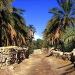 Biskra (Algérie)