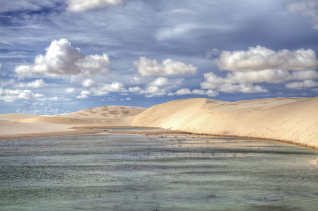 Oases Desert
