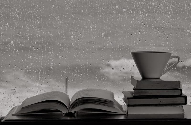 Josep Janer - D+¡a de pluja