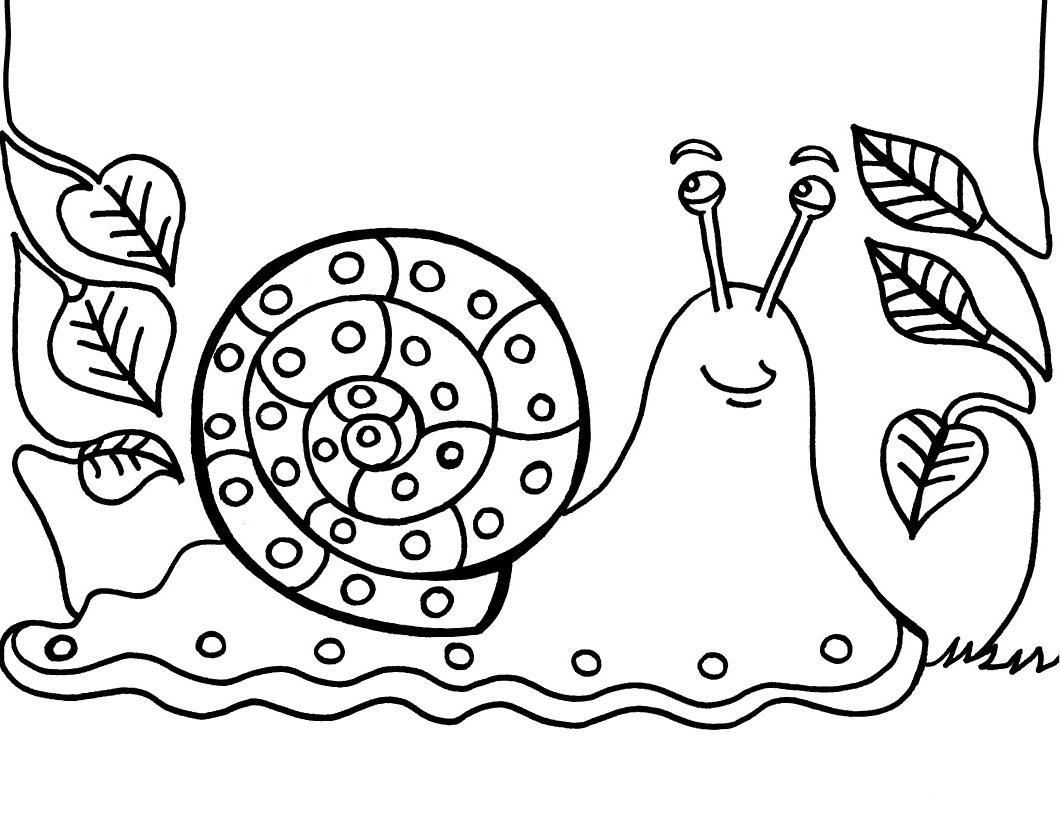 El Desastre de Pilar: El caracol CACOL