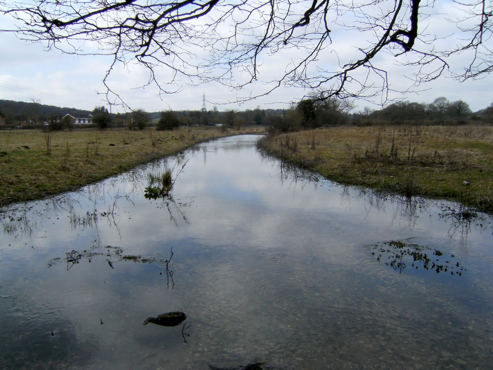 1003130004 More than a stream: River Misbourne in spring