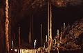 Drunken Forest Cave, 1998 | photo © Matt Kirby