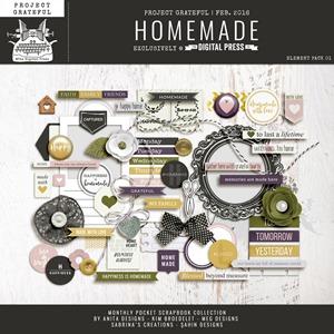 pgm_homemade_el01-preview