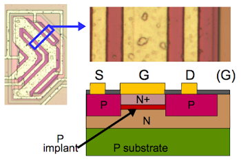 Cross section of an input JFET transistor, showing the construction of the JFET.