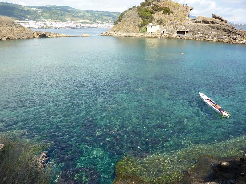 Açores- Natureza viva P1000425