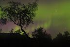 LEVE LE VOILE - 2 -   Aurore boréale dans l'automne lapon. Cette aurore aura duré près de 2h30 !