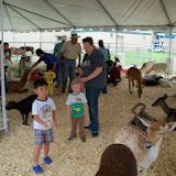 Fort Bend County Fair 2014 - 116_4325.JPG