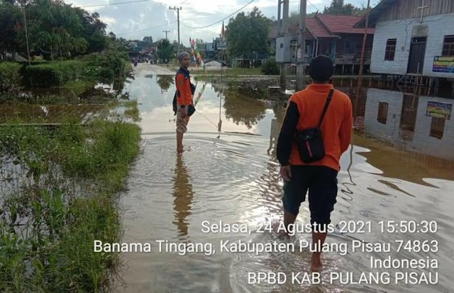 Banjir di Banama Tingang, Ini Upaya yang Dilakukan TRC BPBD Pulang Pisau