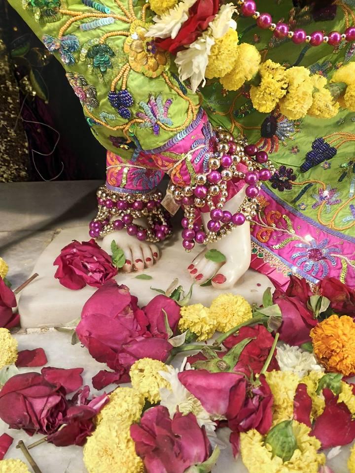 ISKCON Rajkot Deity Darshan 31 Dec 2016 (3)