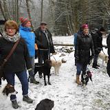 01. Januar 2016: Neujahrswanderung ins Waldnaabtal - DSCI0156.JPG