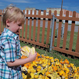 Pumpkin Patch 2015 - 100_0402.JPG