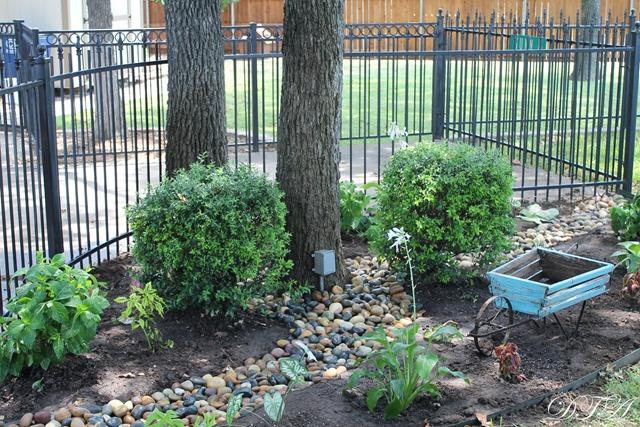 summer garden 053