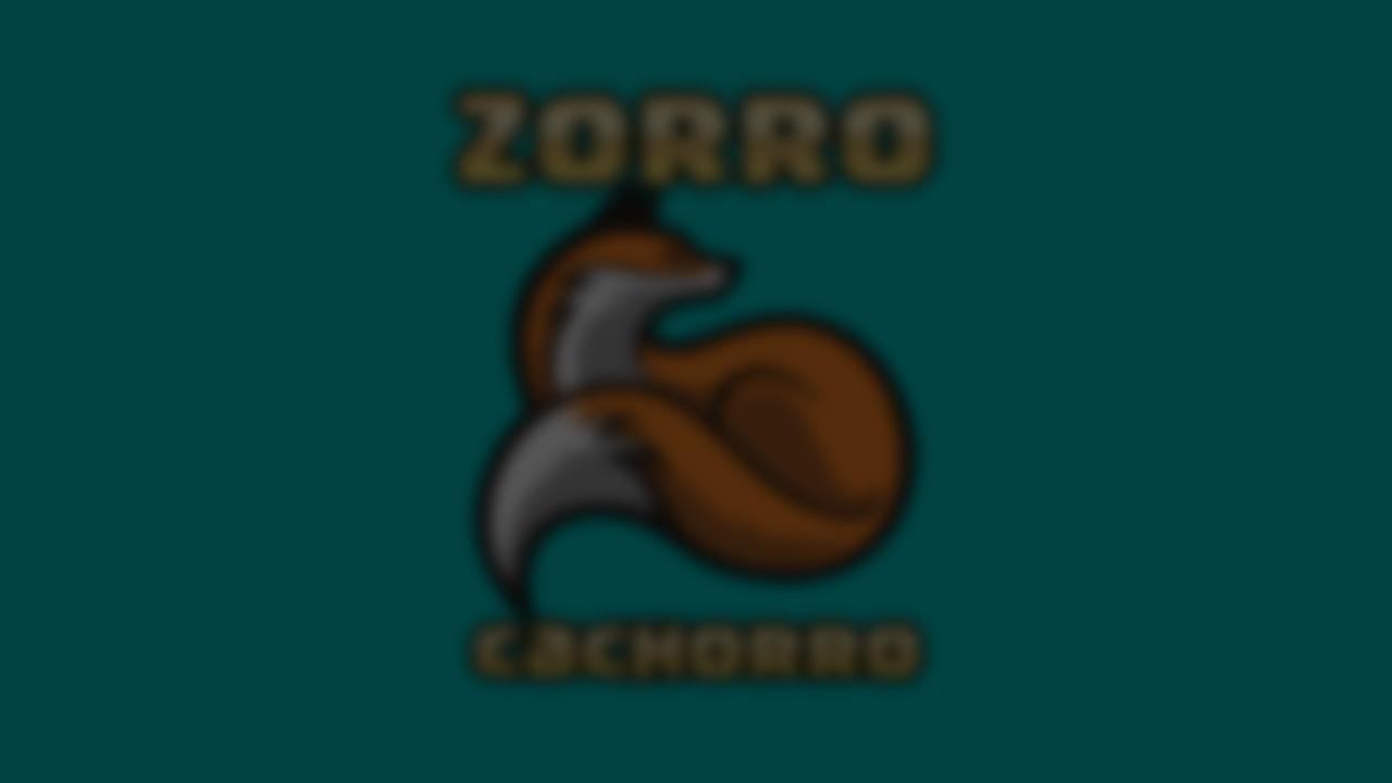 Bienvenidos a Zorro Cachorro