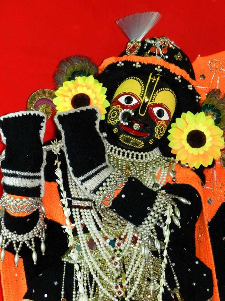 Radha Shyamasundar 10 Jan  2016  (5)