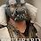 SonOfTanit's profile photo