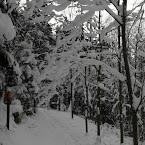 20121209-01-skiing-path.jpg