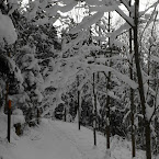 20121209-01-skiing-path.jpg