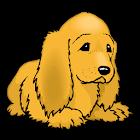 Identifying Animals Words icon
