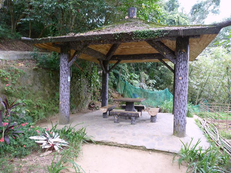 TAIWAN Taipei Dahu Park et dans le quartier de SHIH CHIEN University - P1260250.JPG