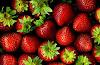 Efficacy of red-flavored strawberries to keep seasonal fruits healthy