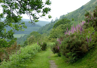 On the Clwydian Way, Llangollen