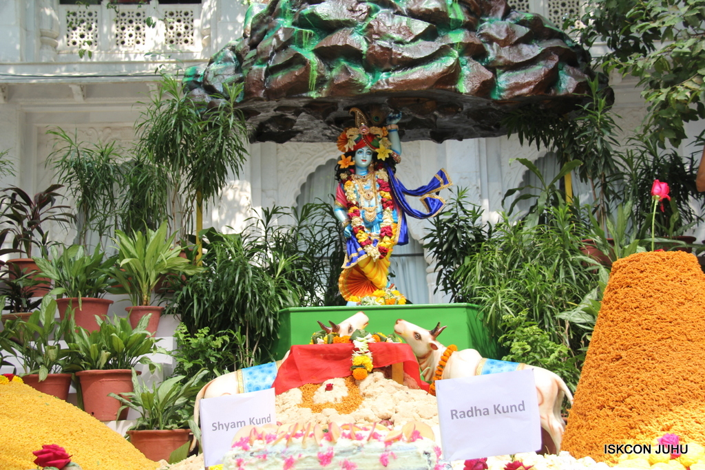 Govardhan Annakut Darshan  At ISKCON Juhu on 31st Oct 2016 (52)