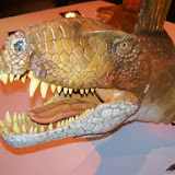 Houston Museum of Natural Science - 116_2694.JPG