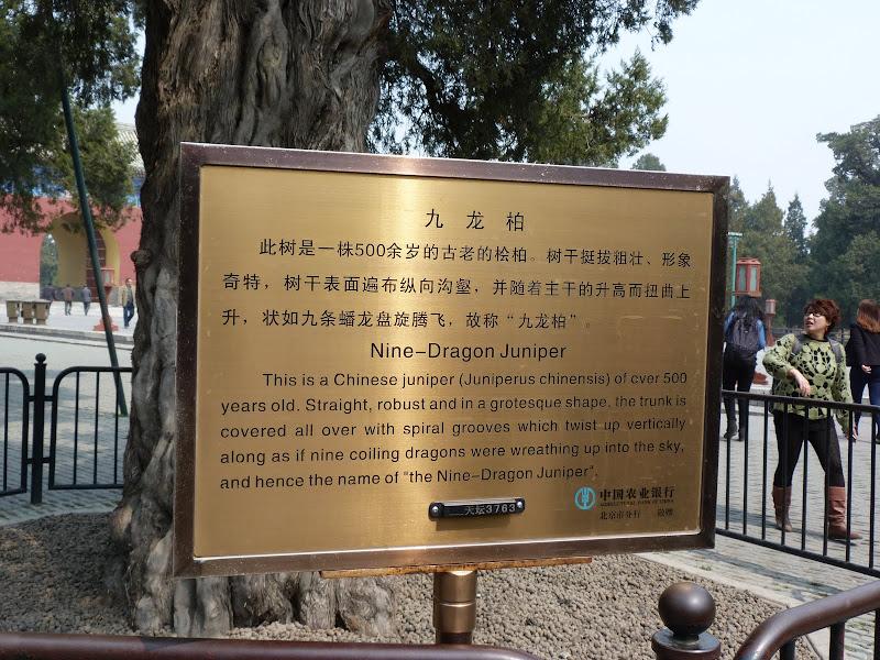 PEKIN Temple Tian tan et une soirée dans les Hutongs - P1260878.JPG