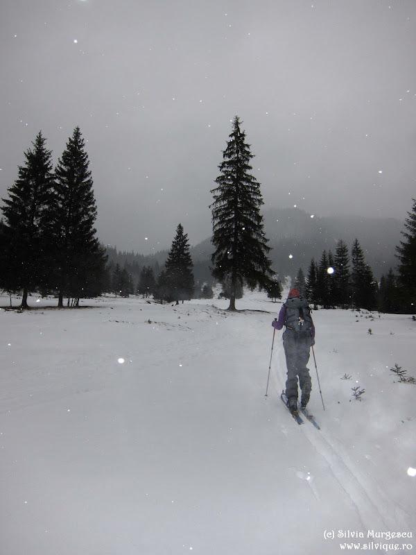 2015.02.8 - Mtii Hasmas - Piatra Singuratica si Vf Hasmasul Mare