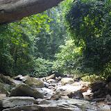 Vers la cascade de Mandian (800 m), Xichuangbanna (Yunnan), 25 août 2010. Photo : J.-M. Gayman