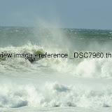 _DSC7960.thumb.jpg