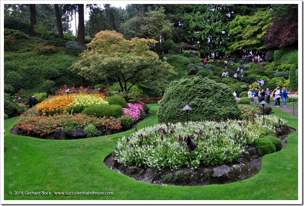 160906_Butchart_Gardens_0046