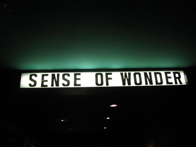 A Sense of Wonder - 3-29-09SenseOfWonder%252C01_1.JPG