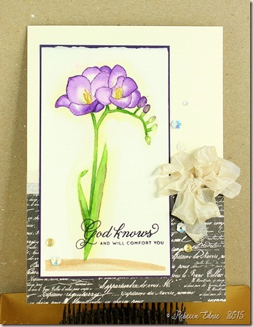 freesia purple sympathy