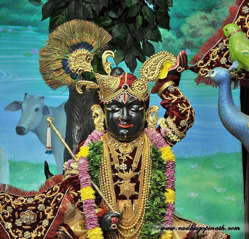 ISKCON Chowpatty Deity Darshan 22 Dec 2015 (16)