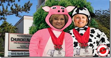 ADI proxy pig cowbelle
