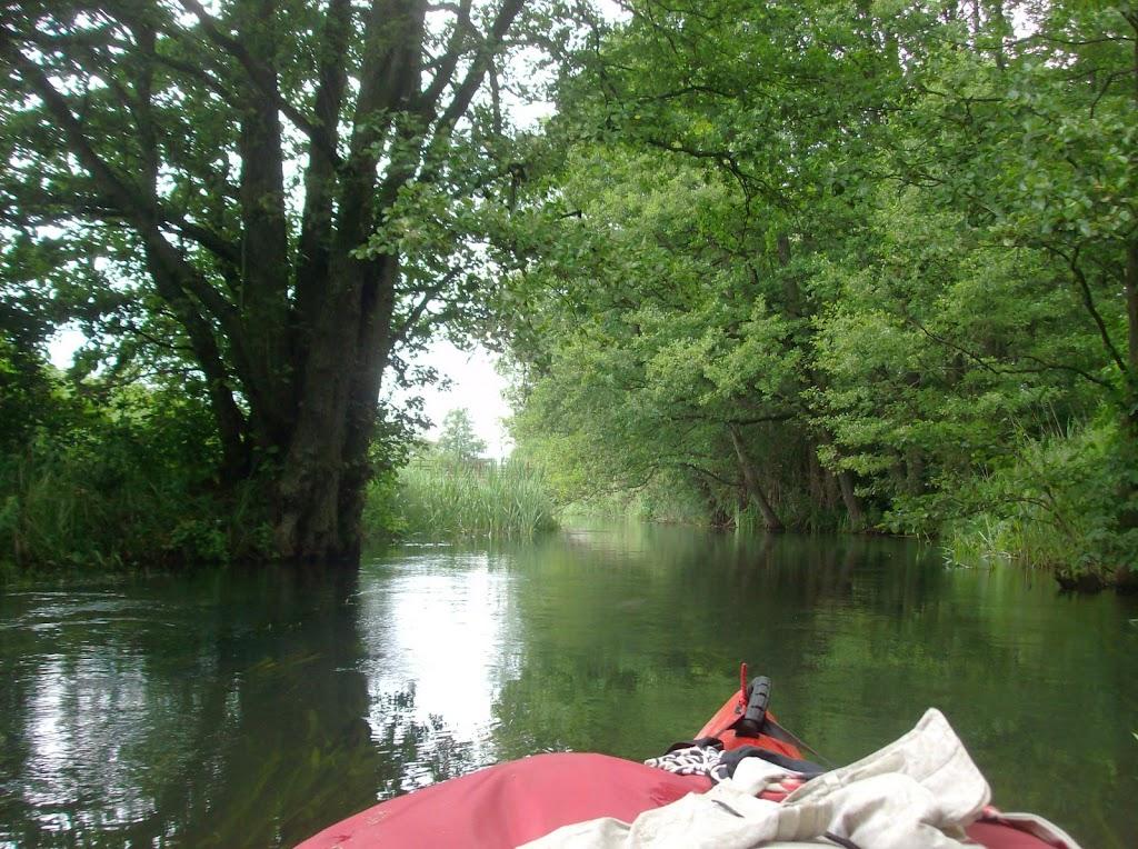 Rzeka Kiermaz.