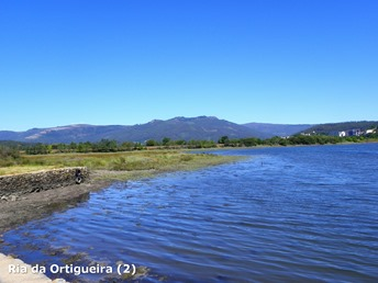 Ria da Ortigueira (2)