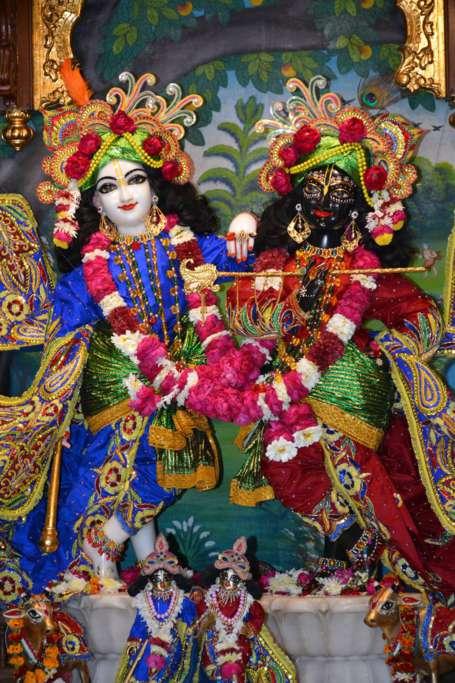 ISKCON Ujjain Deity Darshan 22 Dec 2015 (6)