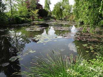 2017.05.15-021 l'étang des nymphéas