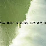 _DSC0564.thumb.jpg