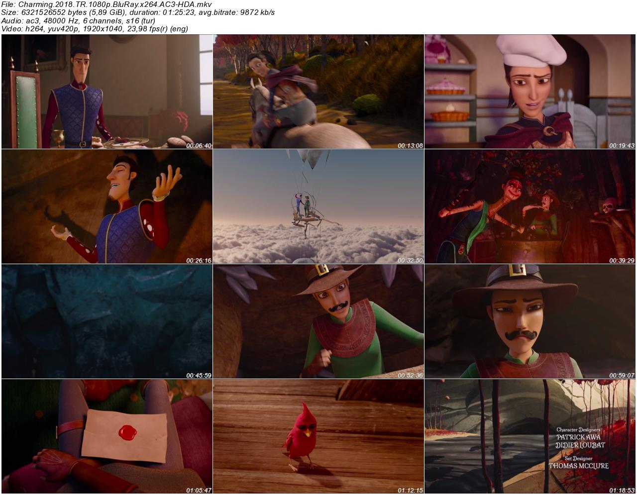 Yakışıklı Prens 2018 - 1080p 720p 480p - Türkçe Dublaj Tek Link indir