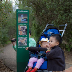 2010 04 18 Mt Lofty and Cleland Conservation Park - IMG_0652.jpg