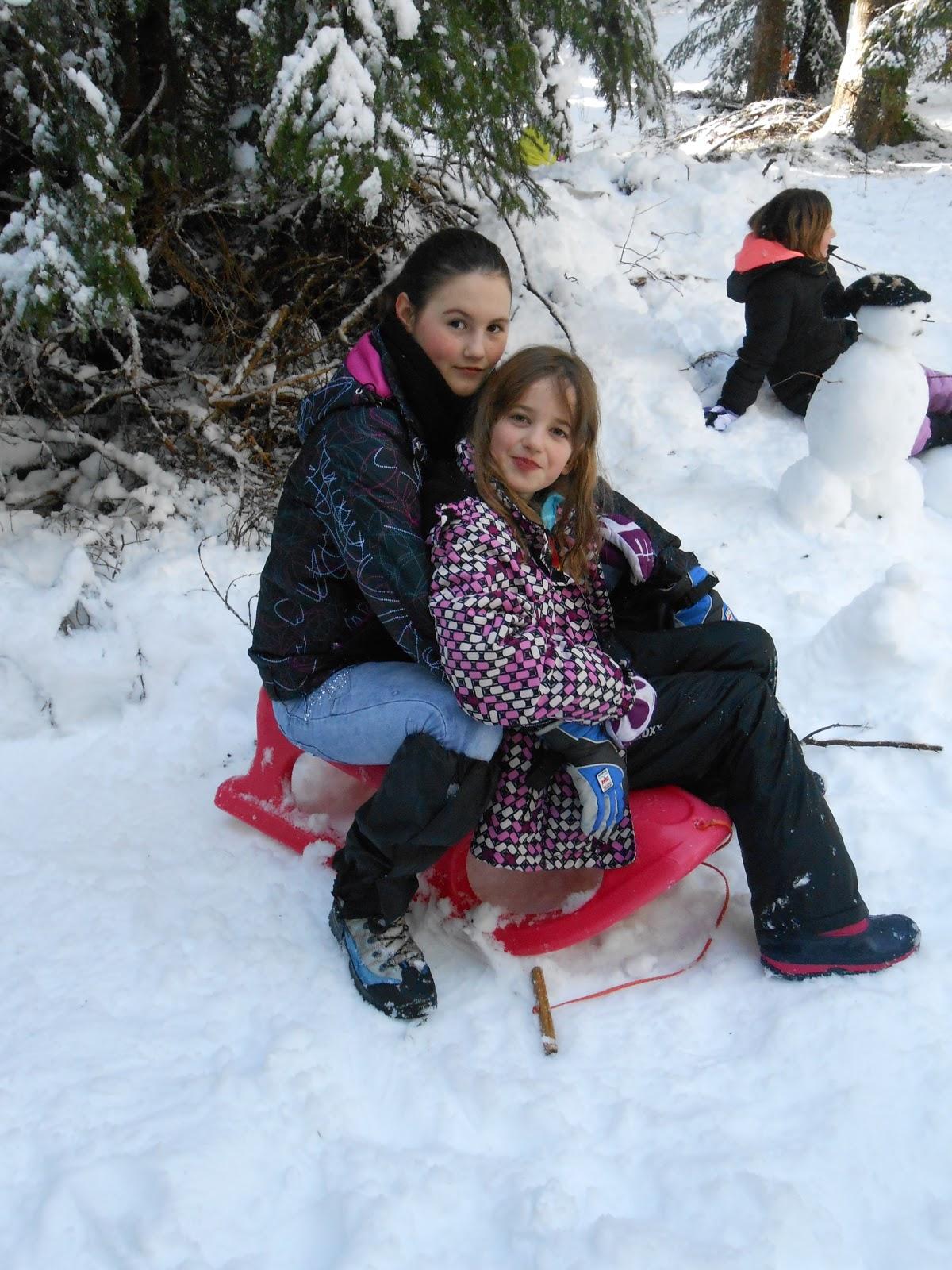 MČ zimovanje, Črni dol, 12.-13. februar 2016 - DSCN5009.JPG