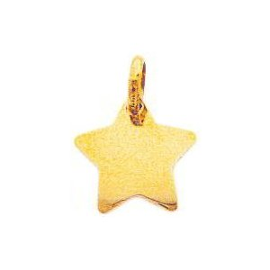 Gold Star Charm