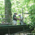 Huish Woods 2010